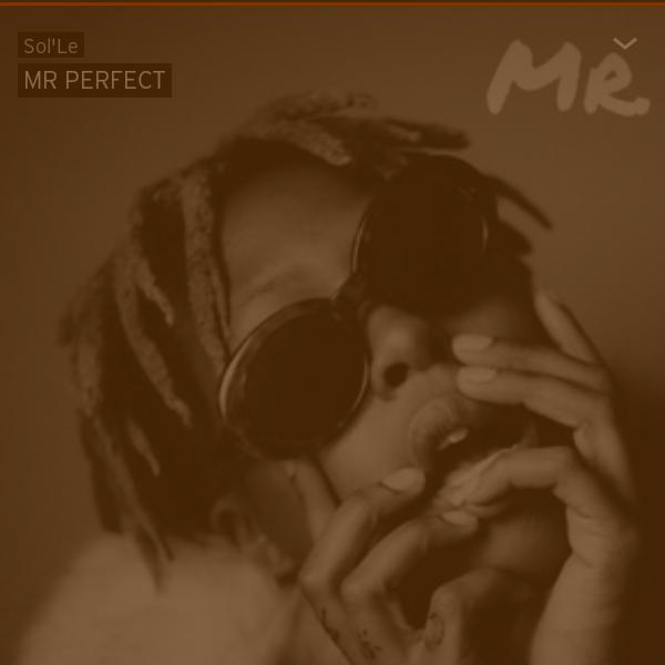 MR PERFECT – Sol Le